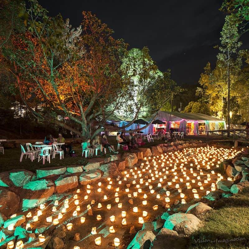 Woodfordia candlelit creek